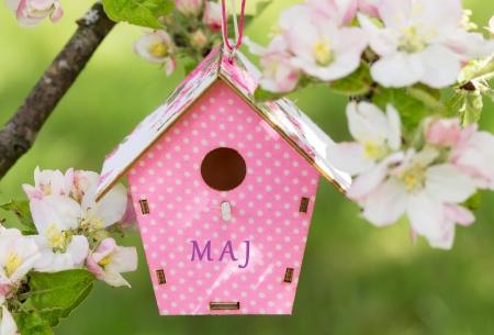 Zamierzenia do planu pracy wychowawczo-opiekuńczo-dydaktycznej na miesiąc maj